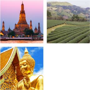 TAC prog tailandia esencia