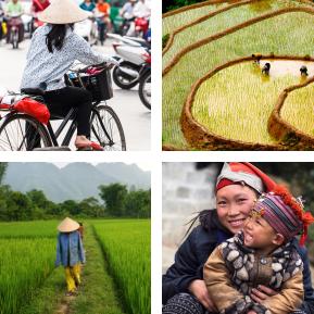 TAC prog vietnam completo
