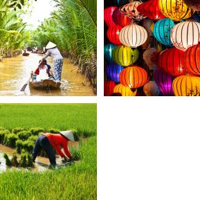 TAC prog vietnam esencia