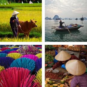 TAC prog vietnam tradicional