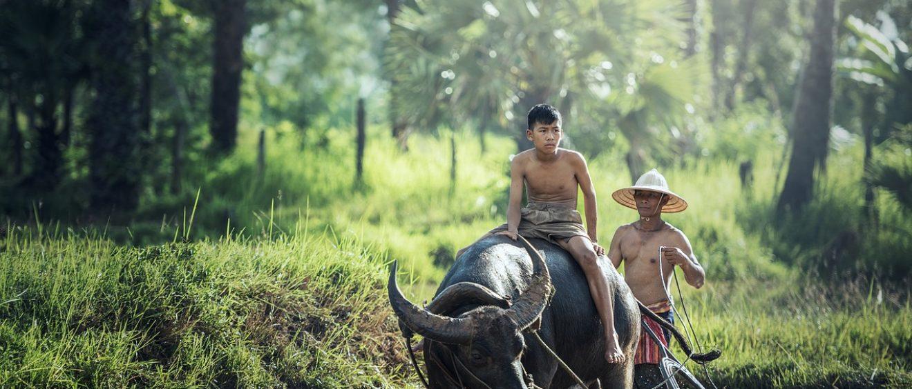 trekking, viaje de andar, viaje a birmania, viajes a medida birmania, viaje a medida myanmar