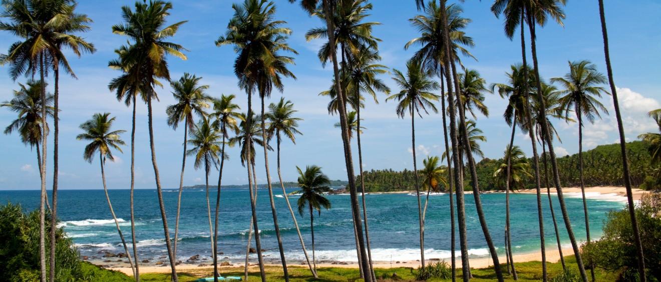 viajes a Sri Lanka, agencia mayorista de viajes