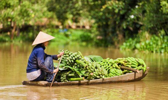 especialistas viajes vietnam, viaje a medida por Vietnam, mayorista de viajes Vietnam