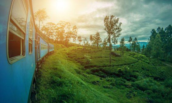 Sri Lanka a Medida